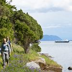 Explore Olympic Wilderness and San Juan Islands