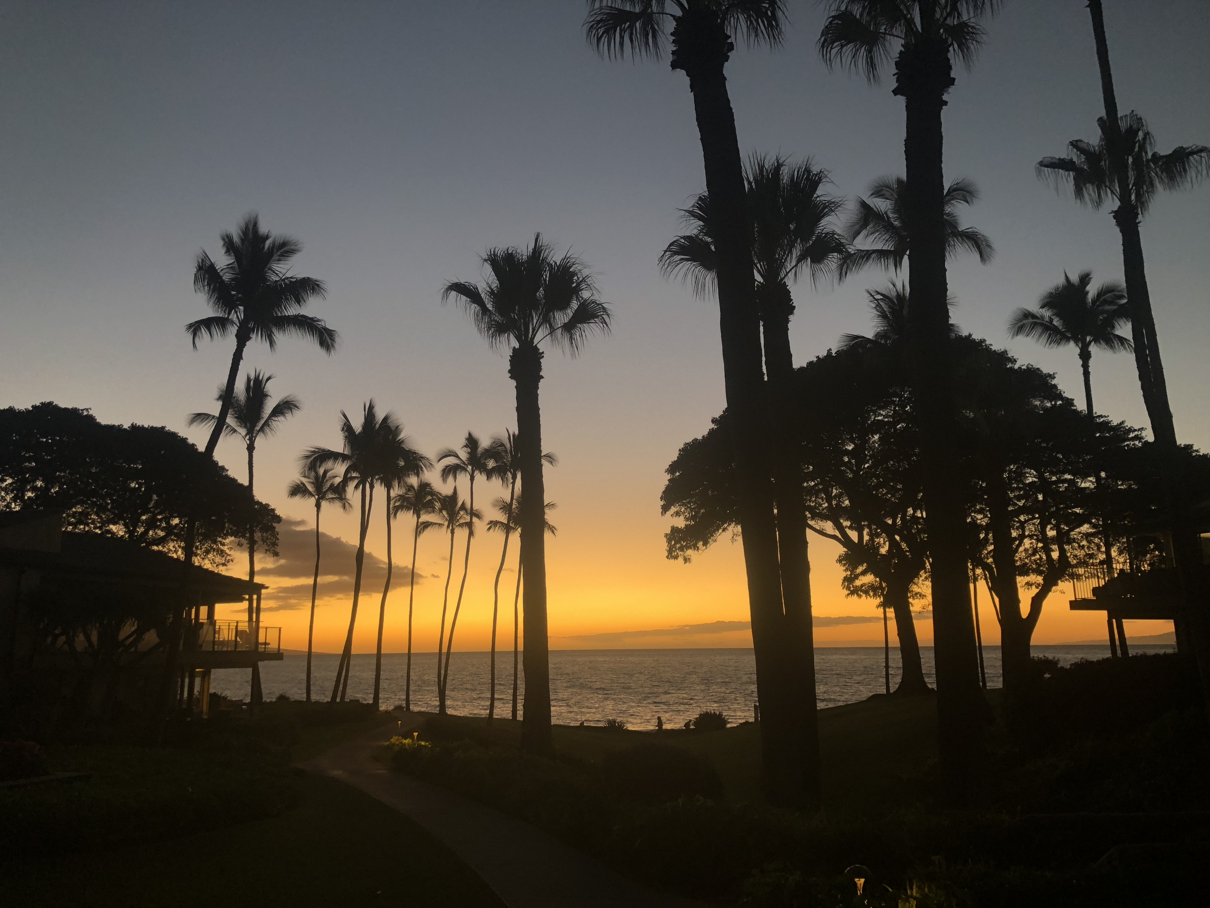 Moment in Maui